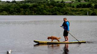 Man and dog paddle boarding