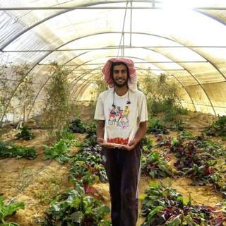 Les légumes bio poussent sans problème