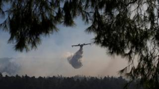 Through the branches of a tree, an aeroplane can be seen flying through smoke to drop water in an attempt to smother the blaze