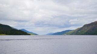 Trees in biochar study near Loch Ness