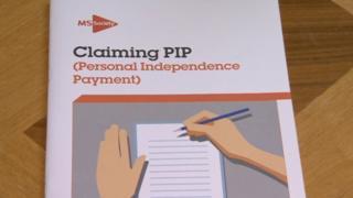 PIP document