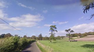 Whatcombe Lane in Winterborne Whitechurch