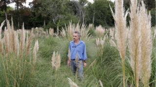 Ignacio Errandonea camina entre la maleza.