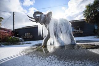 شپې مهال د حرارت درجه له صفره لاندې ولوېده، چې له کبله یې د (فیل فواره) په کنګل بدله شوه
