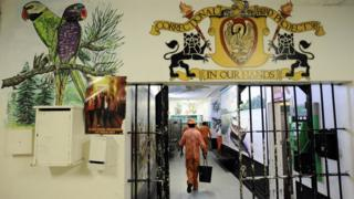 Prisoners walk in a corridor at the Pollsmoor Prison in Cape Town, near painted murals of parrots, on March 18, 2011