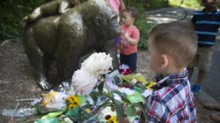 A boy brings flowers to put beside a statue of a gorilla outside the shuttered Gorilla World exhibit at the Cincinnati Zoo Botanical Garden, Monday, May 30, 2016, in Cincinnati.