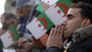 L'Algérie est une équipe à surveiller durant cette édition de la Coupe d'Afrique de Nations.