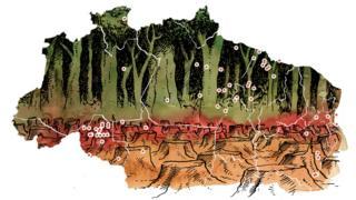 Ilustração sobre mortes no campo