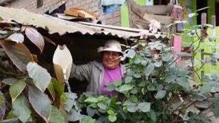 Residente de la Comunidad de Eliseo Collazos en Lima.