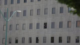 Сүрөттө парламент имаратынын терезесинде карап турган полиция кызматкери.