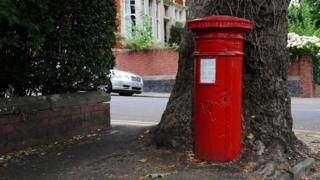 postbox near a tree