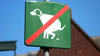 """No dog poo"" sign"