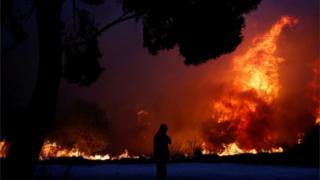 ગ્રીસના જંગલોમાં આગ