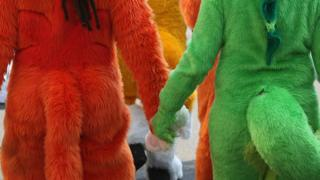 Furries holding handds