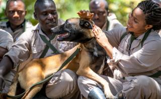A group of trainee dog handlers sitting on the ground and patting a dog on a lead in Arusha, Tanzania