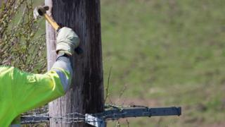 Workman on a wooden power cable
