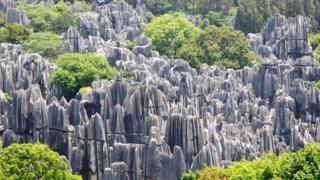 Кам'яний ліс у Китаї