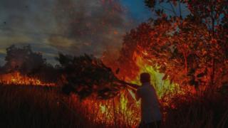 api, kebakaran, karhutla