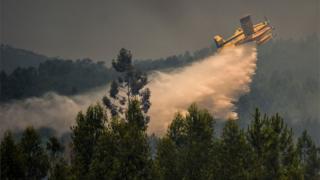 Пожежний літак гасить лісову пожежу в центральній частині Португалії