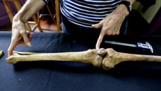 Mujer sostiene un hueso para medirlo sobre una mesa azul.