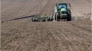 Вже за рік українську землю можна буде продавати і купувати
