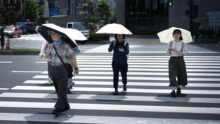 Parasols in Tokyo