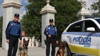 สุนัขตำรวจกรุงมาดริด 22 ตัวจะได้รับการบำบัดด้วยเสียงดนตรีและที่อยู่ติดเครื่องปรับอากาศ