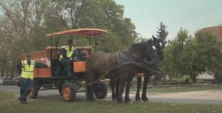 The rubbish collectors with the horse and cart