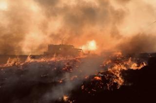 Moray fire