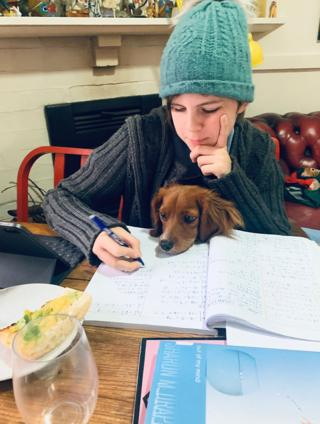 in_pictures Working at a desk with a dog