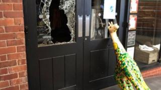Giraffe by smashed shop window