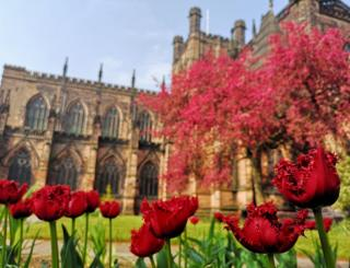 Red flowers with Chester Cathedral in the background