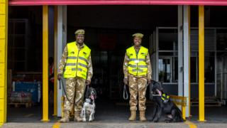 Two dog handlers with their dogs at Jomo Kenyatta International Airport, outside the DHL warehouse, in Nairobi, Kenya