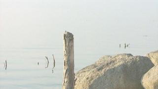 Тивериадское озеро