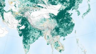 Mapa mostra áreas de vegetação pelo mundo