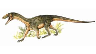 Dinozor akrabası