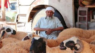 A breeder is seen near sacrificial lambs at a livestock market ahead of the Eid al-Adha in Tripoli, Libya on July 29, 2020. The economic situation, which has been progressively deteriorating after the 14-month attacks launched by the Khalifa Haftar, the leader of the illegitimate armed forces in the east of the country, on April 4 last year, also had a negative impact on the sales of the sacrificial animals.
