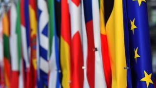 avrupa biriiği bayrakları