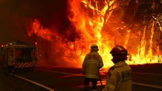 science Two firefighters approach a blaze in New South Wales