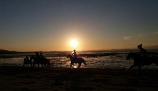 Horses on Musselburgh beach
