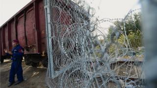 Macaristan-Sırbistan sınırı