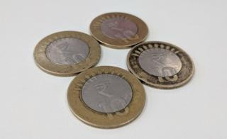 The 10 rupee coins