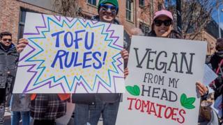 vegan, vegetarian, pemakan daging, omnivora