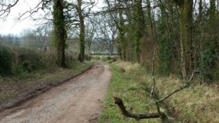 The country lane in Quatt where the dog was found