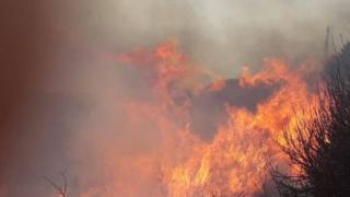 حرائق غير مسبوقة في لبنان