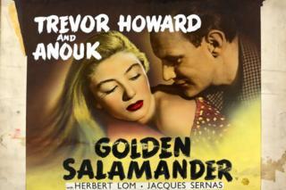in_pictures Golden Salamander poster