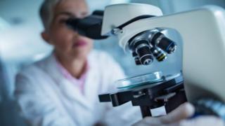 Lab scientist