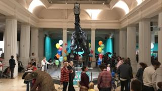 People at Dippy exhibition