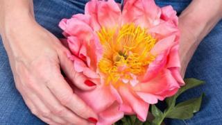 Manos de mujer sosteniendo una flor grande en el regazo