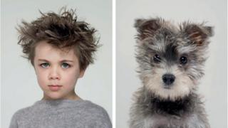 A young boy with blue eyes stares forward next to a fluffy schnoodle with big dark eyes and grey fur.